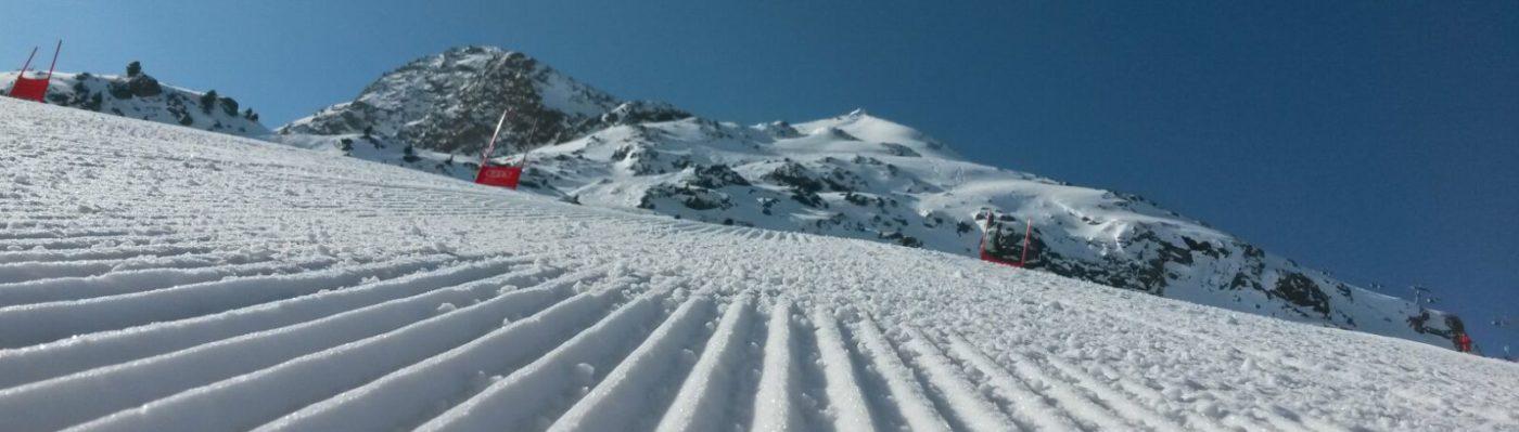 Skiverband Oberland Lehrwesen Alpin